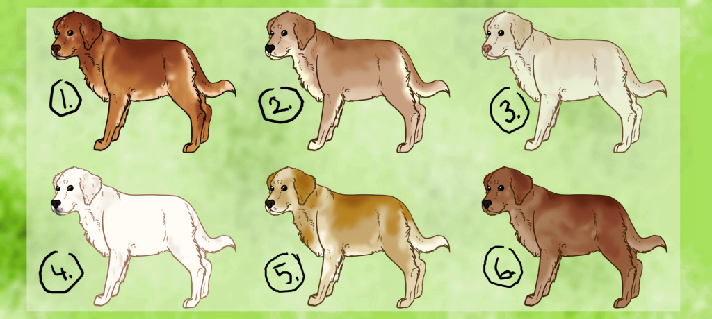 golden_retriever_puppy_adoptables__open__by_kultapossu-d57t6k4